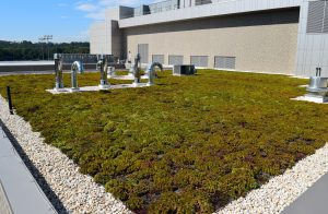 Green roof of UMBC Event Center showing HVAC units